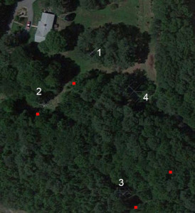 Red dots show approximate positions of 160 meter BS/EF array elements (Google satellite view)